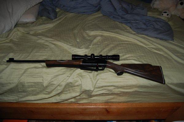 My Favorite Stuffed Animal. .. fail, bb gun. haha loser Guns