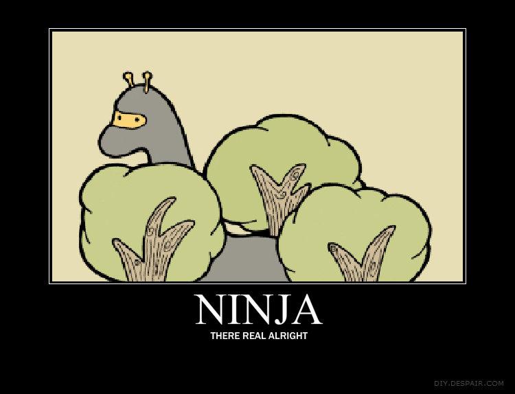 NINJA GIRAFFES. .... NINJA ) THERE REAL FREIGHT
