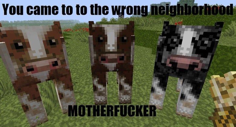 Neighborhood. .