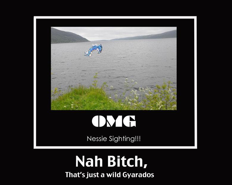 Nessie Sighting. What I found while traveling in Scotland. OC. dine: Nessie Sighting!!! Nah Bitch, That' sjust a wild Gyarados Gyarados Sightin