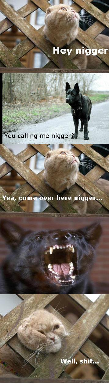 Nigger. .