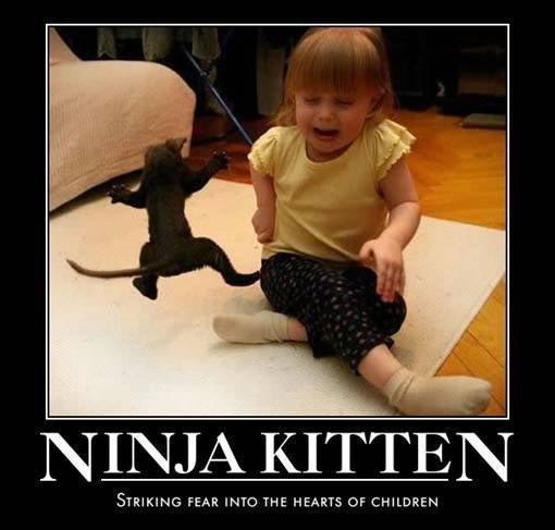 ninja kittin. . STRIKING FEAR INTO THE HEARTY Of CHILDREN