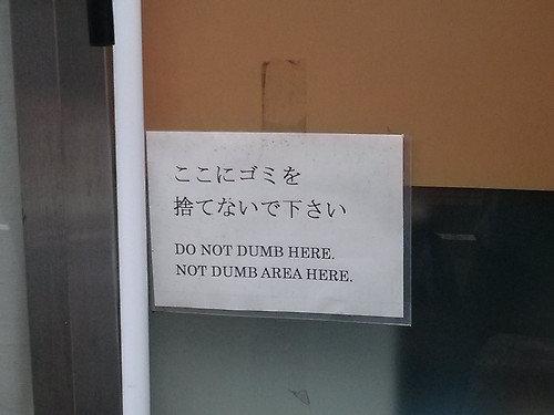 no dumb allowed. . iial' i l. ' DU MB AREA HERE.