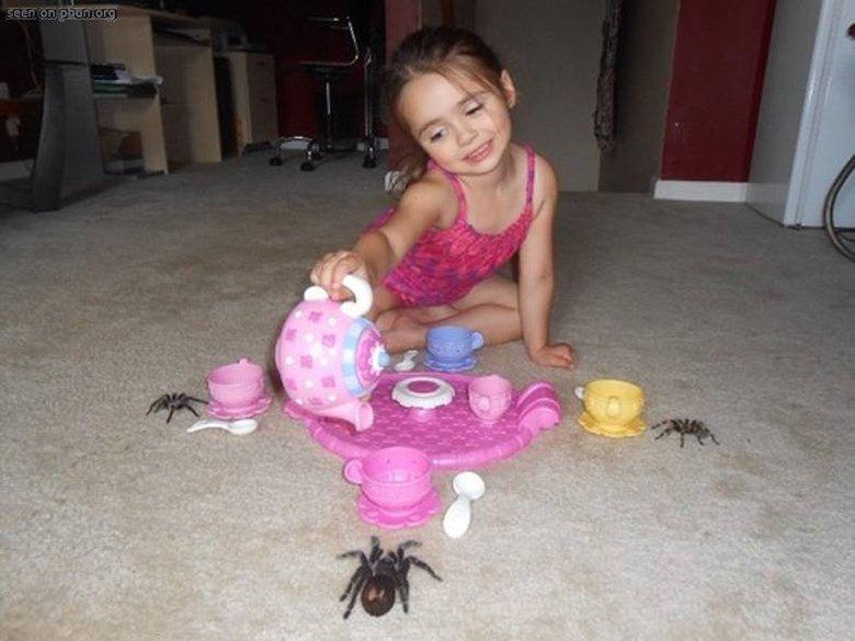 nope, nope, nope. . nope Spiders