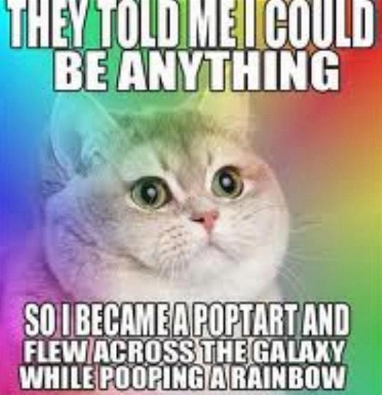Nyan Cat is born. poop.. so iii' igiari( itt an TH [Hill [HIV WWII ll nyan cat loves pooping rainbows