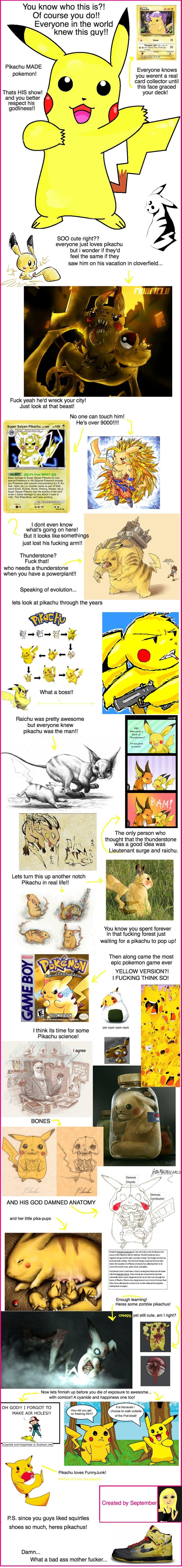 Ode to Pikachu!. Re-uploading my old junk <br /> original: funnyjunk.com/funny_pictures/443090/Ode+to+Pikachu/.. Dear September Marry Me