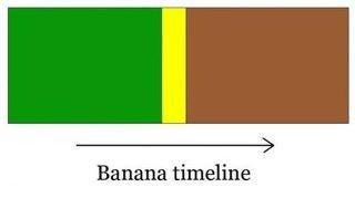 Oh look, they're ripe!. Aaaaaaaaaand it's gone. Banana Emeline