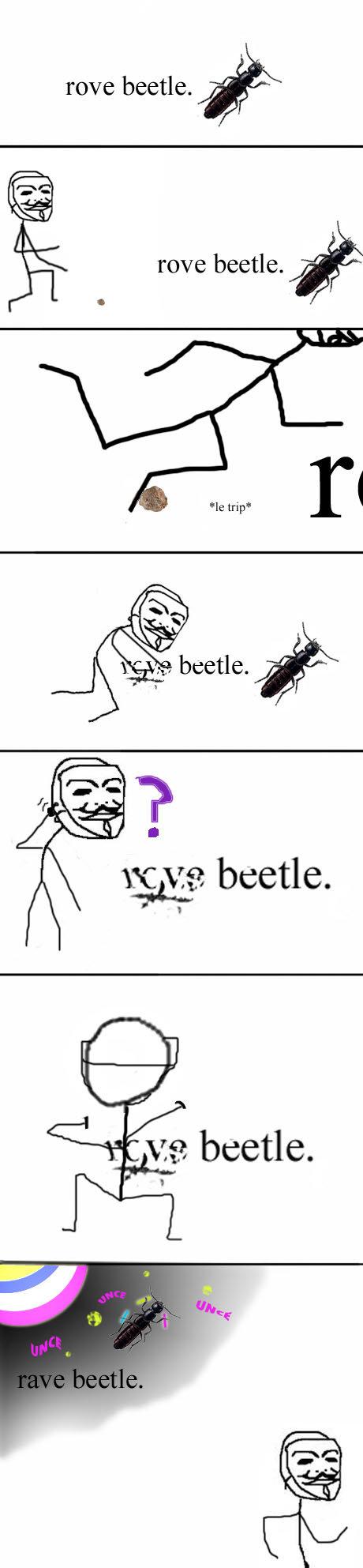 Oh, EFG.. Here's some of my OC!<br /> I got this idea while reading my Environmental Science textbook yesterday.. grove beetle. % nave beetle. %