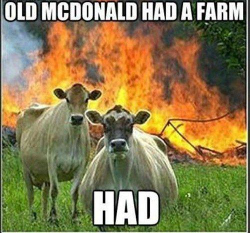 Old McDonald. .