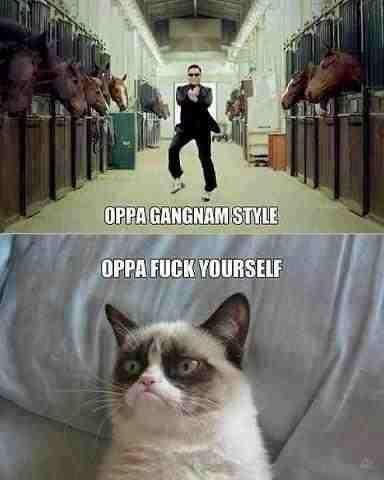 Oppa. Oh god, My sides.
