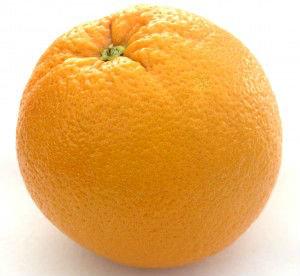 Orange you glad I didn't post a banana?. .. Y
