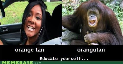 orange utang. . Aiee If xi orange tan orangutan MEMEBASE , ire'.. i see no difference