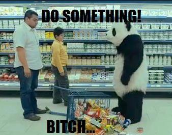 Panda. WHAT BITCH!.. buys Panda cheese