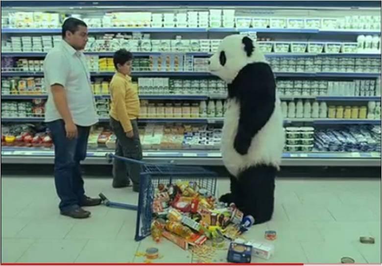 Panda Cheese. Never say no to panda. iird, 1 H at ail. u want vid?
