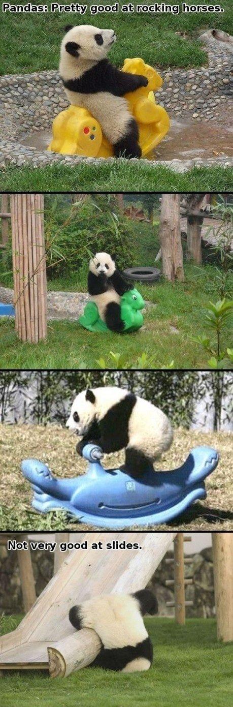 Pandas. .. Repost.