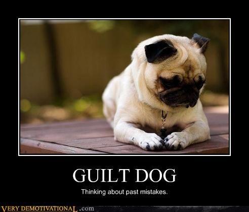 past guilt. . GUILT DOG