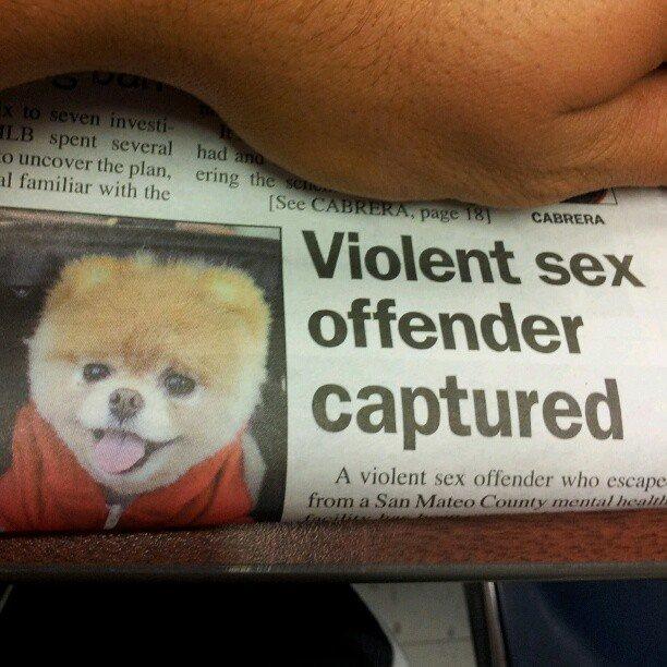 Pedobear IRL. Finally justice... Sowwie. pedobear