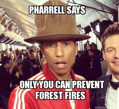 Pharrell The Bear. . it' tharr ti FOREST was jit Pharrel smokey the Bear cancer