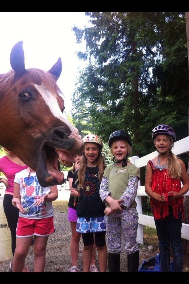 Photobomb level: Horse. .