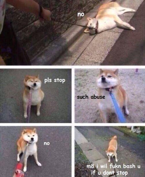 pls stop. .. Doge has returned!