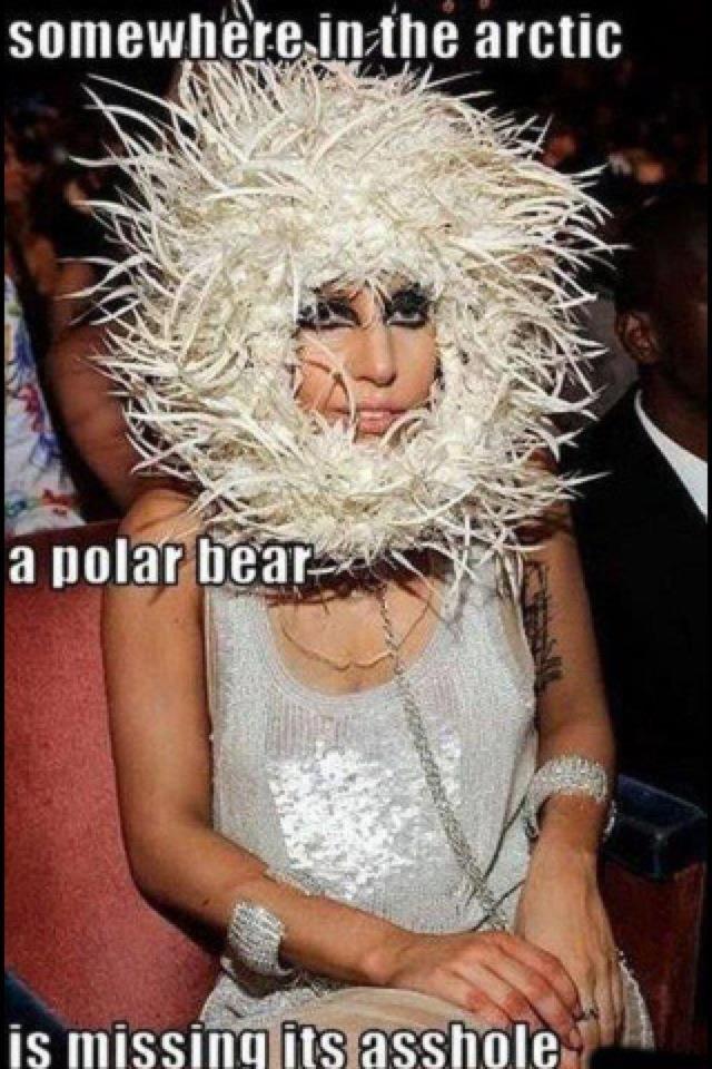 Polar Bear Cruelty. Idno what's uglier... that asshole or the polar bear?.. retoast