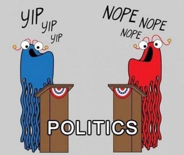 Politics In a Nutshell. . fuck you