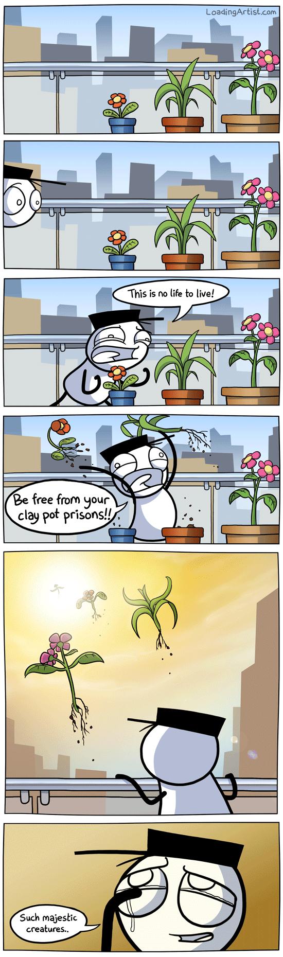"Poor plants. . clay poi pr' us. ona!."". My life in a nutshell."