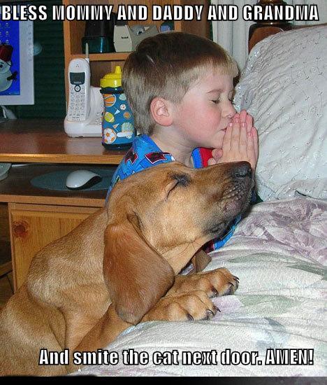 "praying. . Bid"" funny"
