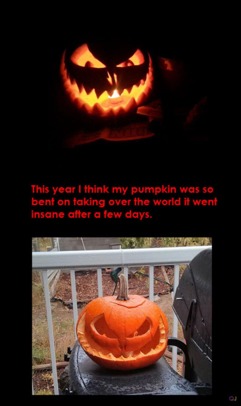 Pumpkin gone bad. .. Related