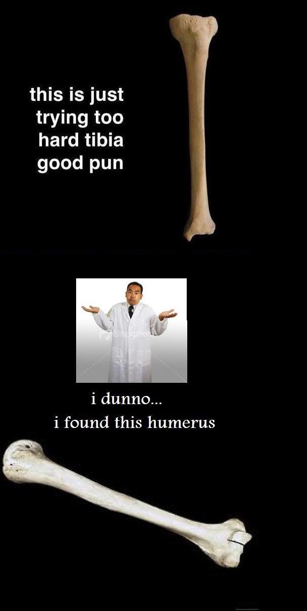 punny picture. . this is just trying we hard tibia good pun i found this humerus. woooooooooooe this is sooooooo lame