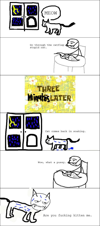 Purrr-etty punny.. . pun cat