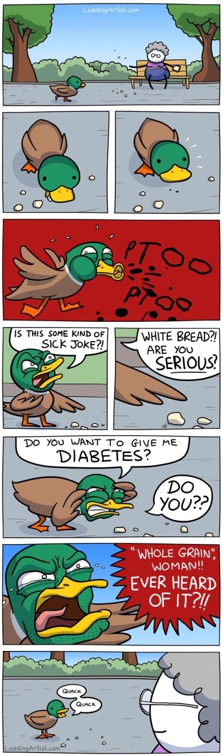 Quack Quack.. . IS THIS SSHE KIND cur SICK Joke?!