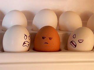 Racist eggs. Poor brown eggs....