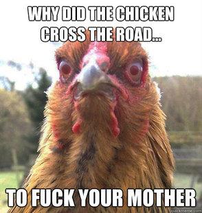 Rage Chicken. . tait ;