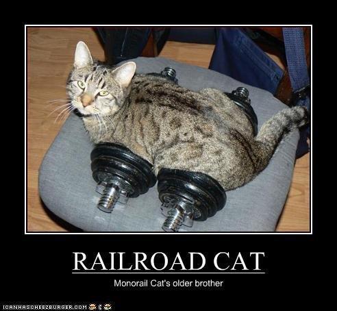 Railroad Cat. . RAILROAD CAT Cat' s alder brother railroad cat