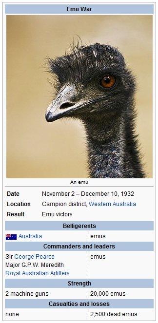Remember the great war?. . Emu War Location Campion district, Western Australia Result Emu victory 1 Australia , eneus leaders Pearce Geneus Majora. P. W. Mered