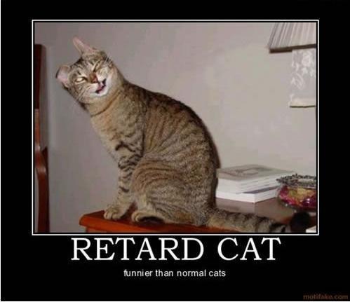 Retard_8e646c_179176.jpg