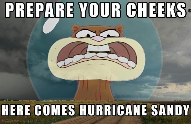 Rock you like a hurricane. . falt' i YOUR [WEEKS