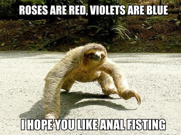 Romantic Sloth. .