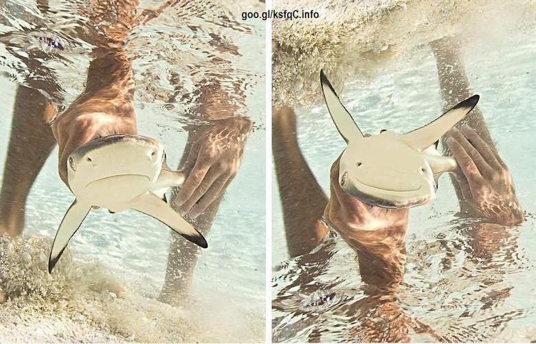 sad :). happy pikachu i swear, stahp.