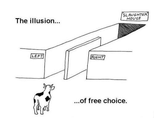 sad truth. . The illusion... ' free choice.. looks good to me