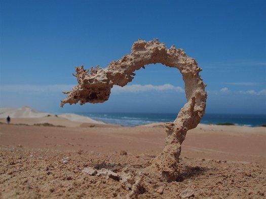 Sand struck by lightning. .. A wild Steelix appeared!