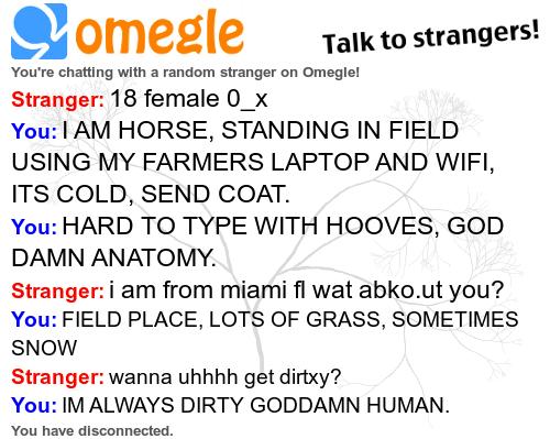 Sarah Jessica Parker. . allt?, omegle Talk my strangers! chatting wath a random stranger an Omeglol Stranger: 18 female D_ x fnu: IAM HORSE, STANDING IN FIELD U