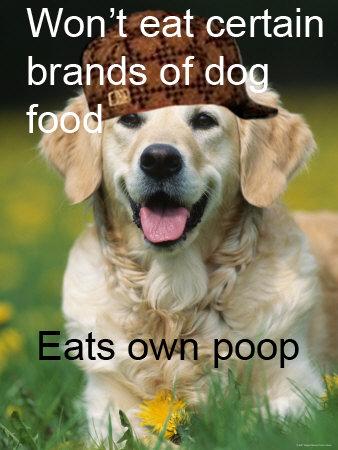 Scumbag dog.. . Won' t eat certain