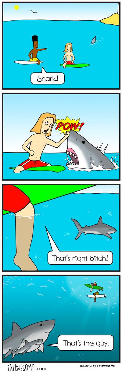 Shark Punch. More comics fatawesome.com. fatawesome shark week shark attack shark attack com shark attack car
