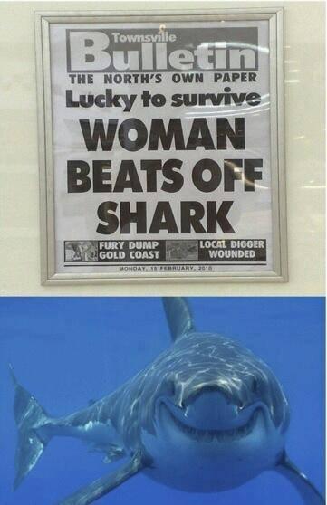 Sharks. . F FURY DEM? Ltot: ltk BIGGER