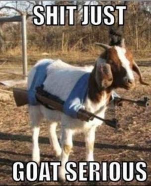 Shit just. goat serious. BUM SERIOUS. Why don't you go Baaaaaaaaaaaaaaaaaaaack where you came from, then?