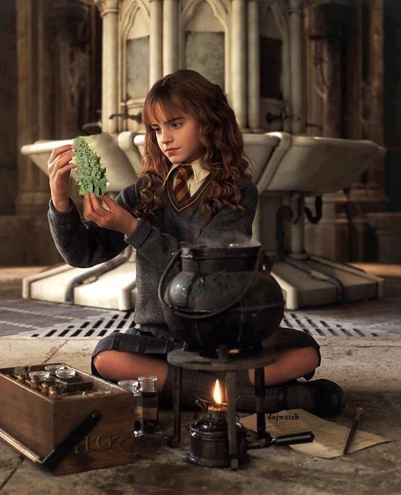 Silly Hermione. Hermiones got dat dank .. Who's dejwotch?