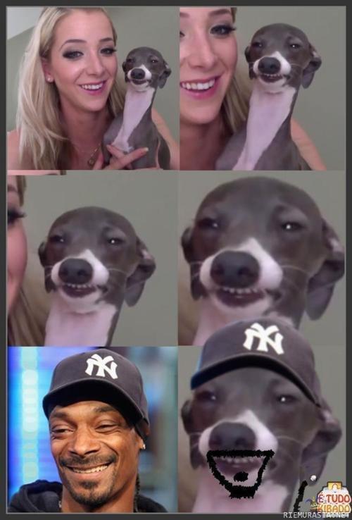 Similarity is similar. Jenna marbles 4evah... repost fag