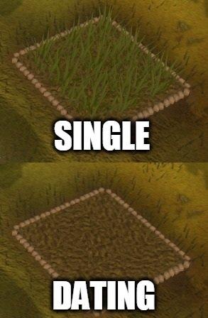 Single vs dating vs ekteskap